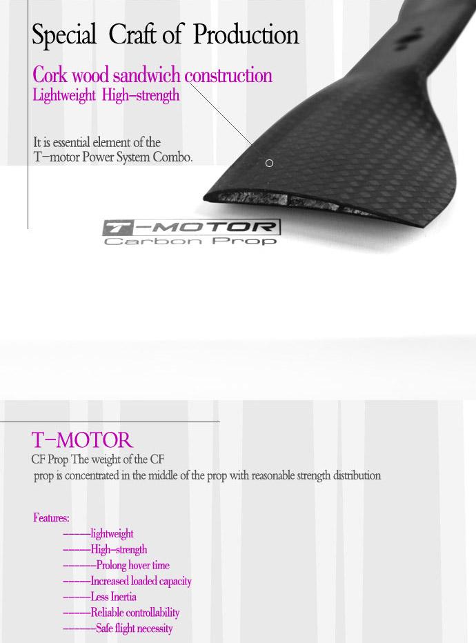 T-MOTOR-17*5.8
